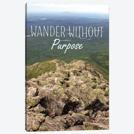 Wander Without Purpose Canvas Print #LOD164} by Lori Deiter Canvas Art