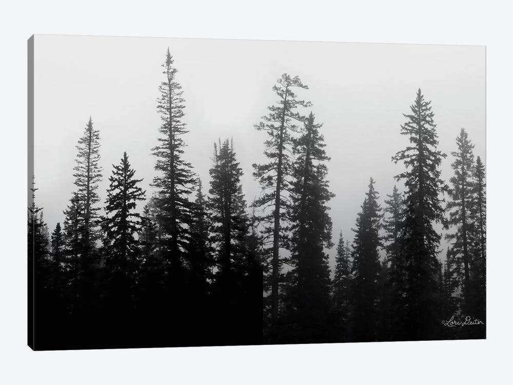 Rocky's Trees by Lori Deiter 1-piece Canvas Wall Art