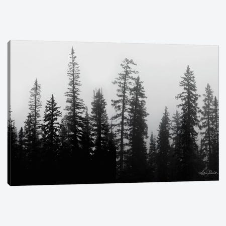 Rocky's Trees Canvas Print #LOD194} by Lori Deiter Canvas Art Print
