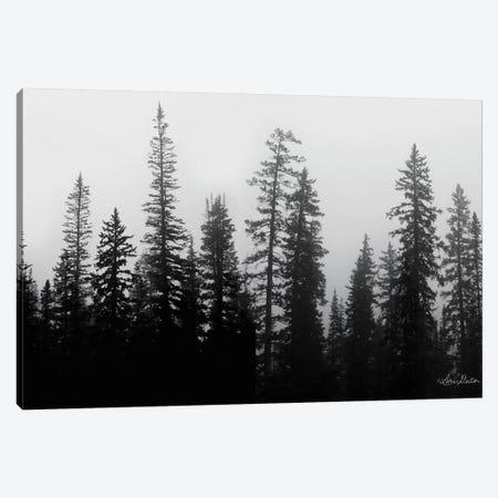 Rocky's Trees Canvas Print #LOD194} by Lori Deiter Canvas Art Print