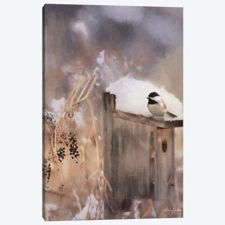 Three Weeks Til Spring Canvas Print #LOD203} by Lori Deiter Canvas Wall Art