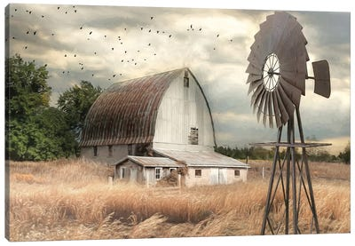 Henderson Bay Farm Canvas Art Print