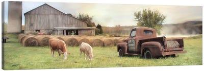 Tioga Country Farmland Canvas Art Print
