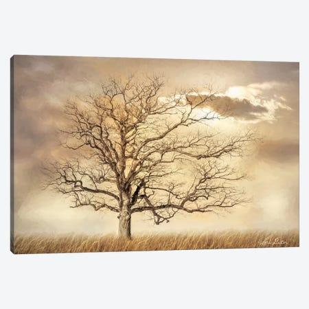 Golden Tree Canvas Print #LOD246} by Lori Deiter Canvas Print