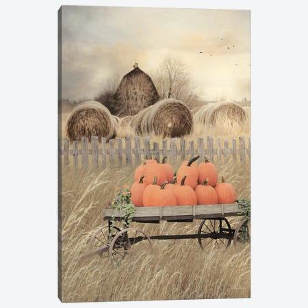 Pumpkin Harvest Canvas Print #LOD259} by Lori Deiter Canvas Art Print