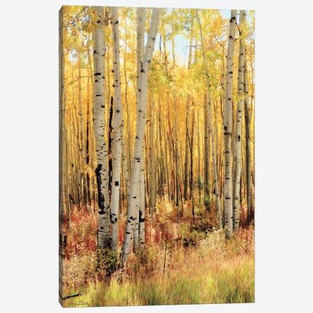 Solid Gold II - Dark Version Canvas Print #LOD265} by Lori Deiter Canvas Art Print