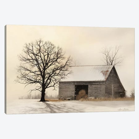 Winter Shadows Canvas Print #LOD276} by Lori Deiter Canvas Art