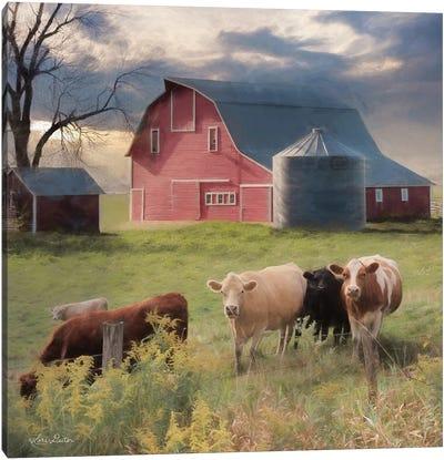 Wyoming Sunset      Canvas Art Print
