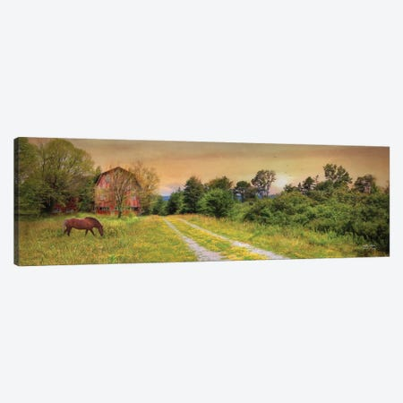 Good Grazing Canvas Print #LOD320} by Lori Deiter Art Print