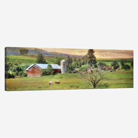 Grazing Sheep Canvas Print #LOD321} by Lori Deiter Canvas Art Print