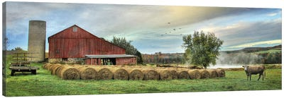 Hay Harvest Canvas Art Print