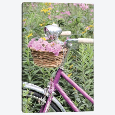Pink Garden Bike Canvas Print #LOD328} by Lori Deiter Art Print