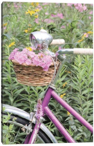 Pink Garden Bike Canvas Art Print