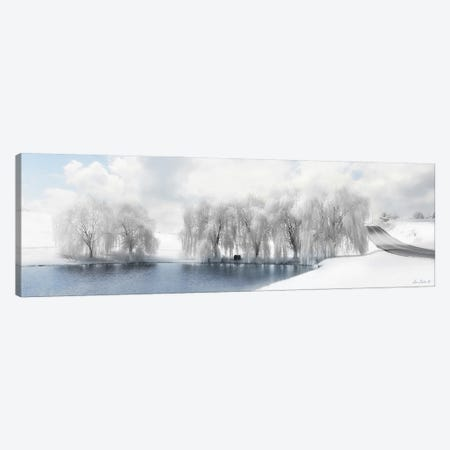 Winter Willow Canvas Print #LOD331} by Lori Deiter Canvas Art