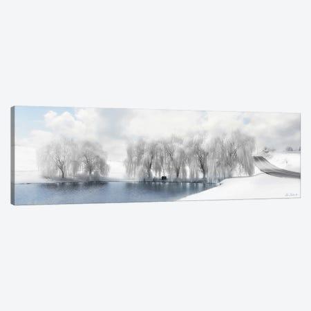 Winter Willow Canvas Print #LOD331} by Lori Deiter Canvas Art
