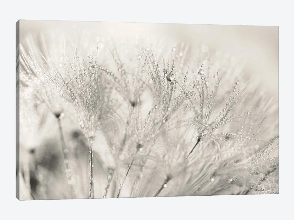 Dandelion Jewels II by Lori Deiter 1-piece Canvas Art Print