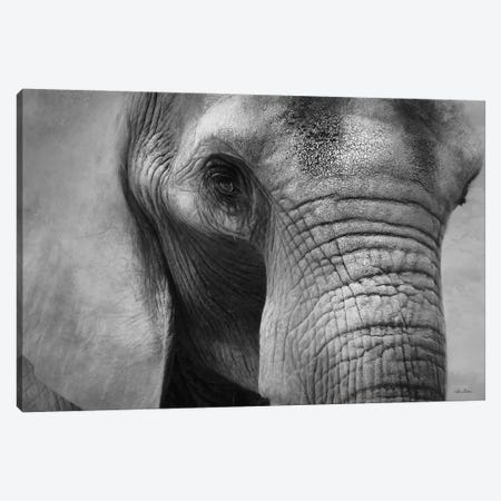 Elephant Canvas Print #LOD337} by Lori Deiter Art Print