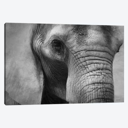 Elephant Canvas Print #LOD337} by Lori Deiter Art Print