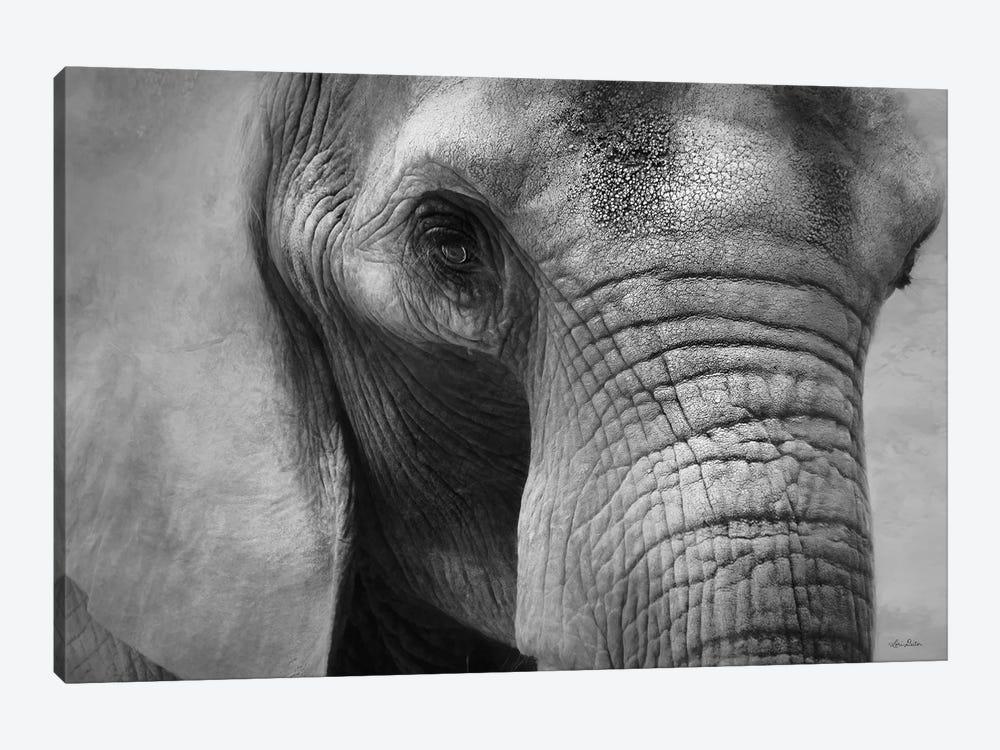 Elephant by Lori Deiter 1-piece Canvas Wall Art