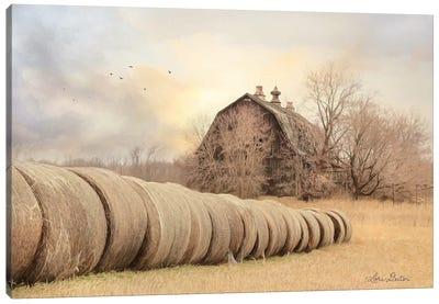 Good Day on the Farm Canvas Art Print