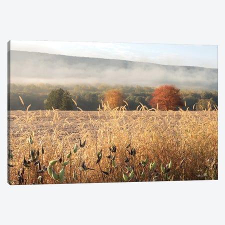 Autumn Shades Canvas Print #LOD358} by Lori Deiter Canvas Artwork