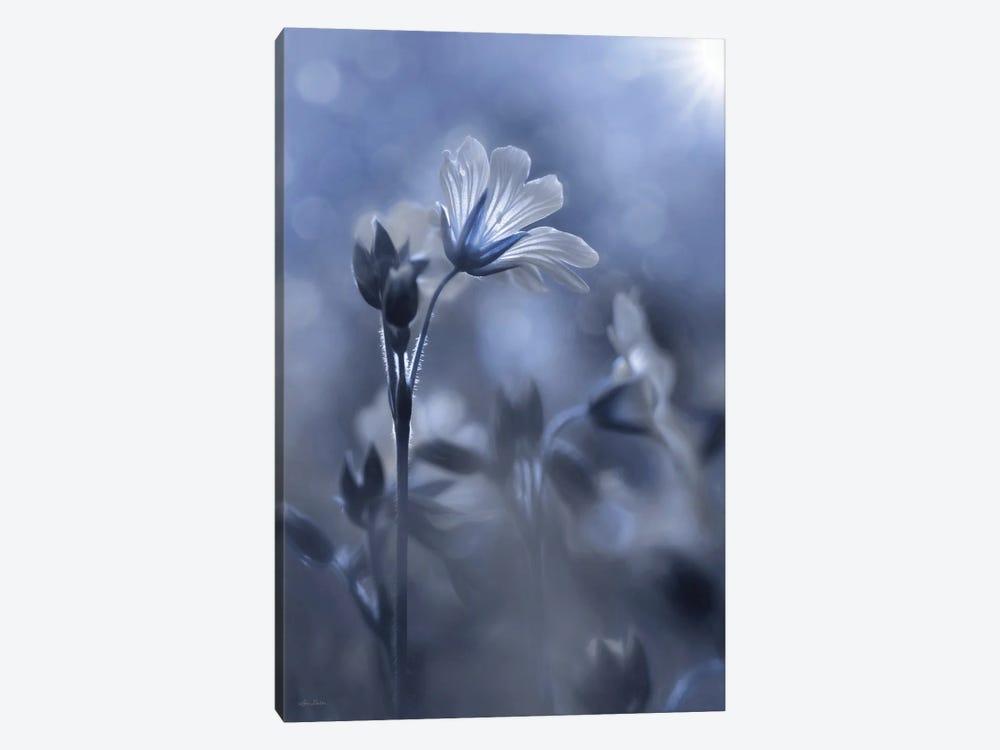 Blue & White Flowers I by Lori Deiter 1-piece Canvas Artwork