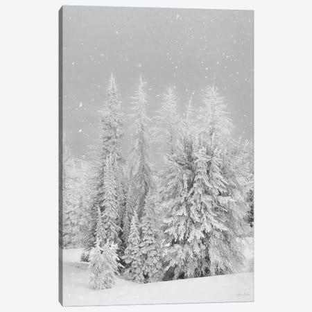 Snowy Lava Mountain Canvas Print #LOD377} by Lori Deiter Art Print