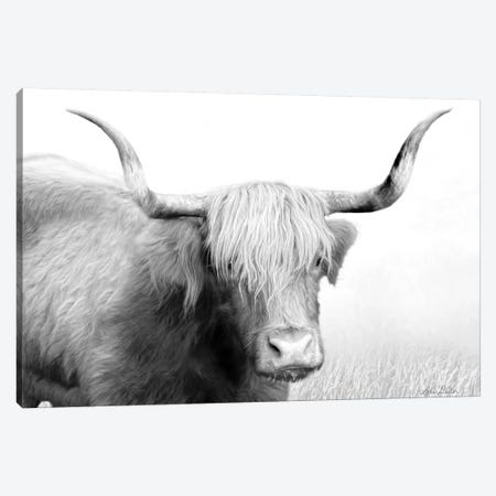 Highland Cow Canvas Print #LOD37} by Lori Deiter Canvas Wall Art