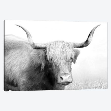 Highland Cow Canvas Print #LOD37} by Lori Deiter Canvas Wall Art