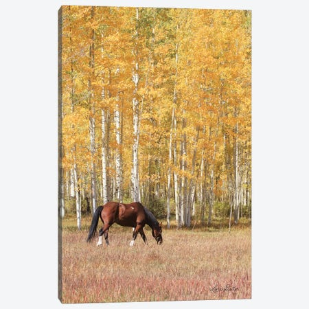 Among the Aspens Canvas Print #LOD3} by Lori Deiter Canvas Artwork