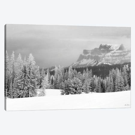Snowy Lava Mountain Canvas Print #LOD463} by Lori Deiter Canvas Wall Art