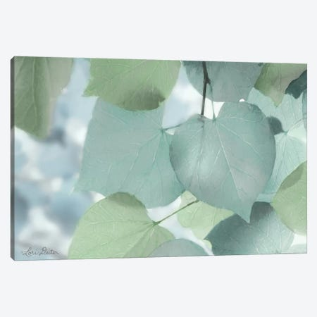 Aqua Leaves Canvas Print #LOD4} by Lori Deiter Canvas Art Print