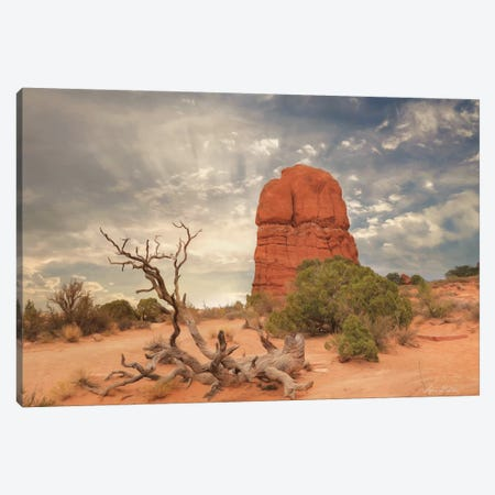 Arches National Park I 3-Piece Canvas #LOD5} by Lori Deiter Canvas Print