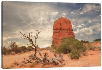 Arches National Park I Canvas Art Print