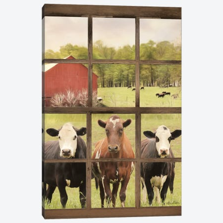 Three Moo View Canvas Print #LOD68} by Lori Deiter Canvas Wall Art