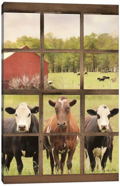 Three Moo View Canvas Art Print