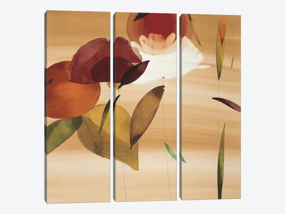 Floral Inspiration II by Lola Abellan 3-piece Canvas Art