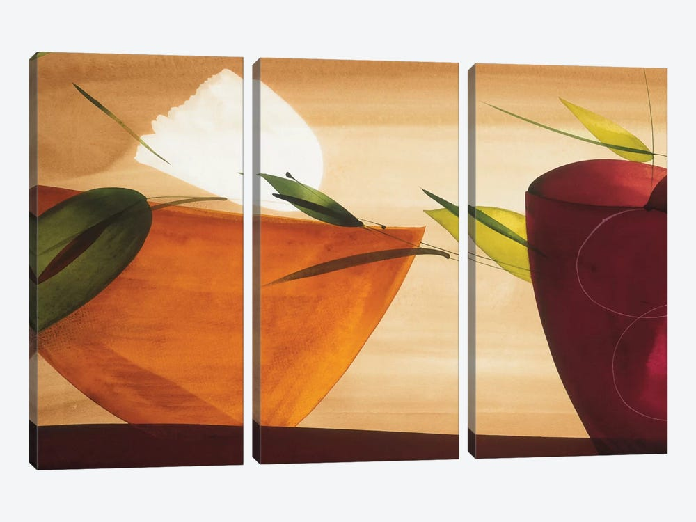 Flores Frescas II by Lola Abellan 3-piece Canvas Wall Art
