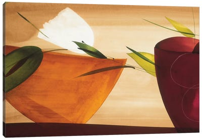 Flores Frescas II Canvas Art Print