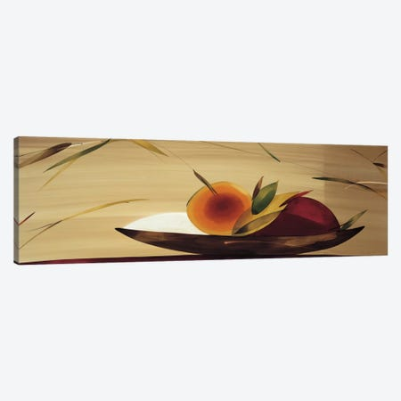 Frutos De La Pasion I Canvas Print #LOL19} by Lola Abellan Art Print