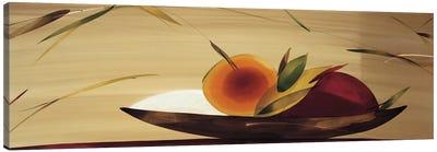 Frutos De La Pasion I Canvas Art Print