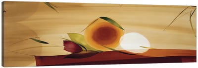 Frutos De La Pasion II Canvas Art Print
