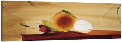 Frutos De La Pasion II Canvas Art Print