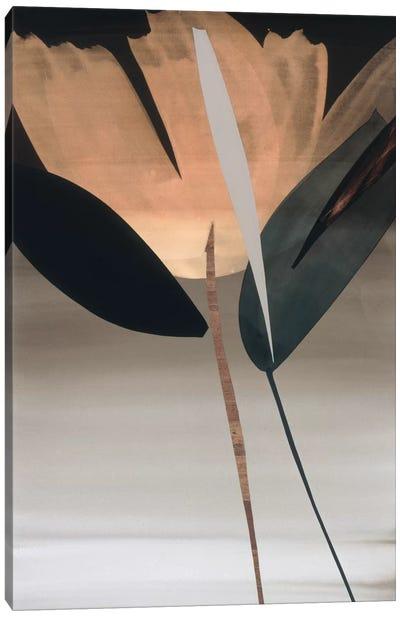 Second Movement I Canvas Art Print