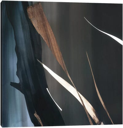 Woodland Festival III Canvas Art Print