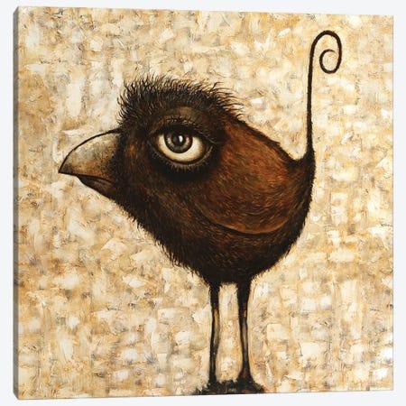 Bird Canvas Print #LOM42} by Leith O'Malley Canvas Print