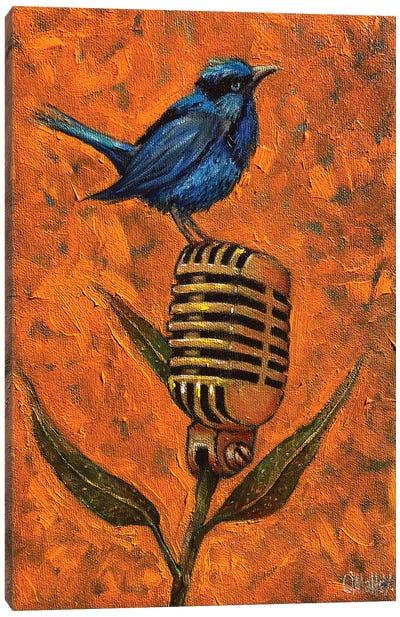 Blue Wren Canvas Art Print