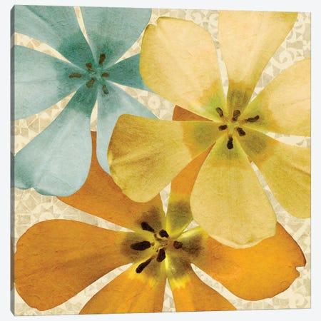 Springtime Glow I Canvas Print #LON100} by Alonzo Saunders Art Print