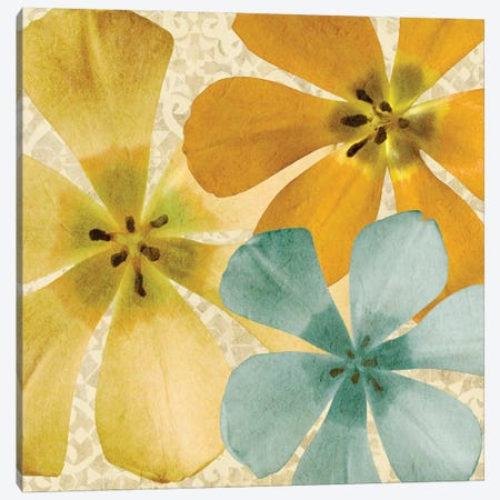 Springtime Glow II Canvas Print #LON101} by Alonzo Saunders Art Print