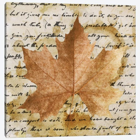 Earth Leaf I Canvas Print #LON113} by Alonzo Saunders Canvas Art
